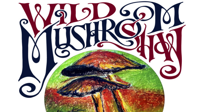 NMA Wild Mushroom Show is Oct 18, 2015 (2014 winning artwork by Stanojka Stuart)